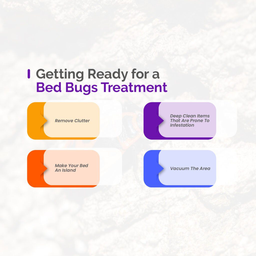 Getting Ready for a Bed Bugs Treatment