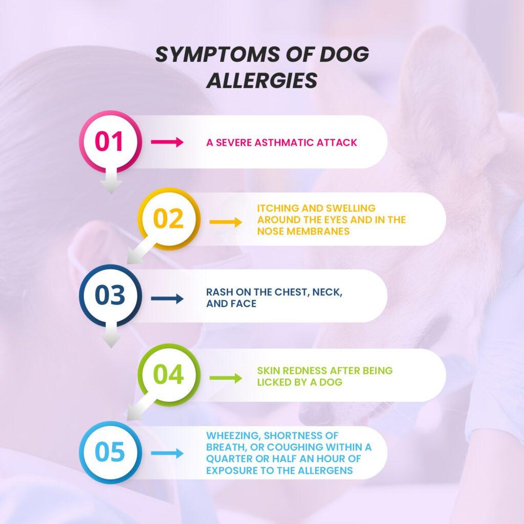 Symptoms of Dog Allergies